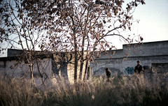 Perdidos (Mendoshp/xxx/) Tags: sunset tree arbol atardecer shark industrial branch afternoon estate julia retrato pablo nave ruinas cordoba ape late mota zone fabrica tiburon portriat bape ramas hierva poligono sudadera mendoshp