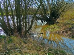 Bach fliet in die Leine (Sophia-Fatima) Tags: river deutschland bach fluss niedersachsen leine laatzen
