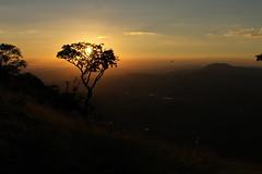 rvore e o Por do sol no Pedro (Vinicius Montgomery) Tags: de minas maria da montgomery vincius prof sul f pedro itajub pedralva