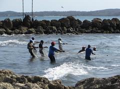 Bringing in the nets (SamSpade...) Tags: sea fishing rocks waves fishermen nets cartagena 0910 570 ogp 150210