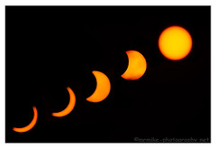 """Solar Eclipse Sequence • <a style=""""font-size:0.8em;"""" href=""""http://www.flickr.com/photos/40272831@N07/16872898855/"""" target=""""_blank"""">View on Flickr</a>"""