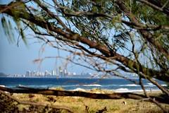 Gold Coast / Australia (haphopper) Tags: sea sky building tree beach nature easter town australia qld queensland goldcoast  ool
