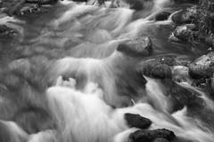 (jeiline) Tags: longexposure lake fall nature oregon lacamaslake lacamas longexposition