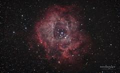 Caldwell 49 - Rosette Nebula (AstroBackyard) Tags: camera sky black rose night way star big space ngc astro telescope galaxy nebula astronomy dust universe bang unicorn milky rosette astrology nebular constellation forming