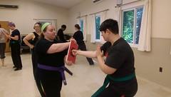 Seven Star Retreat 2016 (GinaMK) Tags: retreat kungfu kung fu sevenstarwomenskungfu kajukenbo