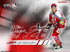 #28 Jan SNOPEK in action (kirusgamewornjerseys) Tags: game jan worn jersey mller pardubice snopek