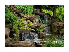 Waterfall at the Merrifield Garden Center, Fairfax, VA (sorrellbruce) Tags: nature water weather garden outdoors waterfall spring nikon quiet overcast calm d750 softlight gardencenter merrifieldgardencenter lr6 photoninja colorefexpro nikond750 petebridgwoodsharpeningpresets framefunr