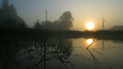 Sunrise (mih.mih4) Tags: morning trees light sky sun mist lake reflection nature water clouds rural sunrise canon landscape spring pond village air paisaje
