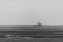 molentje op streepjescode (KbijK) Tags: water landschap mistig molens krommeniedijk