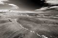 Coastline (albireo 2006) Tags: blackwhitephotos blackandwhite blackandwhitephotos blackwhite bw bn nb pb troon beach sandybeach troonbeach