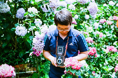 () Tags: macro film zeiss 50mm pentax kodak bokeh jena mc carl m42 ddr 100 hydrangea f18   spf ajisai 50mmf18 ektar filmphotography  czj   pancolar  kodakektar100 ektar100 czjpancolar50mmf18 carlzeissjenaddrpancolar50mmf18mc