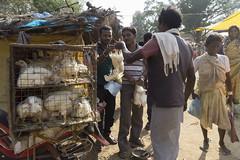 Rural market (wietsej) Tags: india chicken zeiss rural market sony tribal 1670 chhattisgarh a6000 kawardha sel1670z