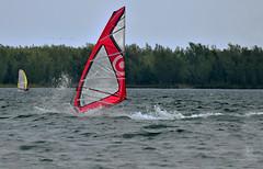 Red-white Sail (kaprysnamorela) Tags: lake toronto ontario canada water sport sail windsurfing nikond3300 cherrbeach