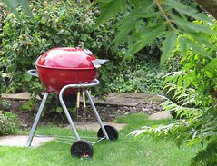 3669 Summer Bar-b-q (Andy panomaniacanonymous) Tags: 20160822 barbq bbb garden ggg horsell lawn lll sss summer