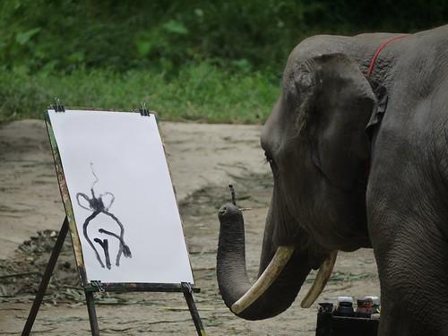 Mae Taeung Elephant Park,Chiang Mai