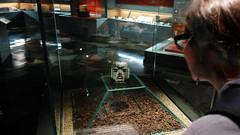 Olmec mask, c. 1200 - 400 B.C.E.