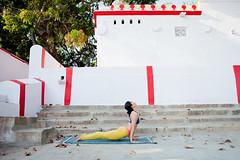 IMG_8462©ChristineHewitt_YogicPhotos (yogicphotos) Tags: woman india yellow yoga asian temple photography exercise stretch astrid brunette fitness mysore asana leggings asianwoman ashtanga christinehewitt srirangapatna updog yogapants urdhvamukhasvanasana upwardfacingdog felxible yogaphotography yogicphotos yogaleggings astidmann astridman yellowyogapants