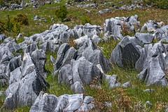 Canaan Downs Rocks (fotofrysk) Tags: newzealand limestone southisland karst rockformations canaan canaandowns tasmanmountains nikond7100 201411152478 ringcyclelocation
