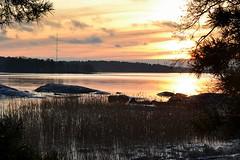New Year's Day afternoon sun above the sea in Hevossalmi (Helsinki, 20120101) (RainoL) Tags: sunset sea finland landscape geotagged helsinki january balticsea u helsingfors fin 2012 uusimaa nyland laajasalo hevossalmi 201201 20120101 geo:lat=6016034800 geo:lon=2504700600