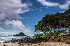 Koki Beach Maui (Richard Saasta, Sharing the Beauty) Tags: maui eastcoast kokibeach richardsaasta maui2012