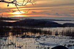 New Year's Day sunset on seashore in Hevossalmi (Helsinki, 20120101) (RainoL) Tags: sunset sea sky finland geotagged islands helsinki january balticsea best u helsingfors fin cpl 2012 uusimaa nyland laajasalo hevossalmi 201201 20120101 geo:lat=6016030000 geo:lon=2504701700