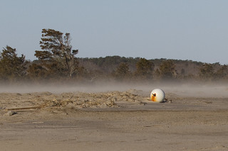 Wind Blown Sand/Snow Behind a Big Buoy