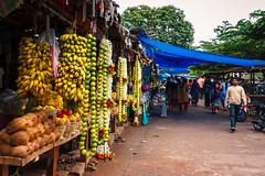 Mercado en Shrirangapattana (Multimaniaco) Tags: autumn india fruit market fruta mercado otoño karnataka 2011 shrirangapattana postalitas