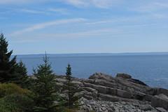 Looking out to Sea (Phil Spell) Tags: ocean statepark trees sea sky usa clouds coast nikon rocks unitedstates maine newengland northamerica coastline seashore atlanticocean lubec rockycoastline nikond60 westquoddyheadstatepark