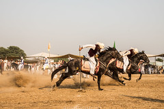 Gallop (imtiazchaudhry) Tags: sport ground lance precision rider gallop tentpegging