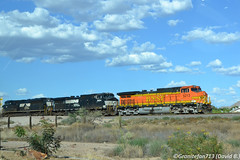 BNSF 5213 GE C44-9W (AZ) (Trucks, Buses, & Trains by granitefan713) Tags: train power ns locomotive foreign ge bnsf generalelectric norfolksouthern burlingtonnorthernsantafe dash9 c449w gec449w roadpower