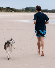 Look at me run.jpg (tomorrowdog) Tags: dog cute beach husky elements roxy byron tallow sibes tallowbeach roxyhusky roxythehuskysiberian