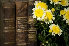 Eterno / Efimero (TheLionPo) Tags: old flowers plants flores beautiful vintage books libros eternal efimero