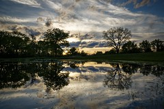 Rural Pond Reflections (Notley) Tags: trees sky cloud lake reflection clouds rural landscape spring pond outdoor reflect missouri april serene cloudysky 2016 10thavenue notley notleyhawkins coopercountymissouri missouriphotography httpwwwnotleyhawkinscom notleyhawkinsphotography