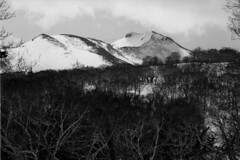 Mt.Nishi-Shokanbetsu from Mt.Nakanosawa (threepinner) Tags: ski japan spring hokkaido skiing pentax kodak   hq 135mm microfilm hokkaidou mzm f35 northernjapan mashike smcpentax imagelink   mountainsnaps mtshokanbetsu    mtnishishokanbetsu analogmountainsnaps mtnakanosawa