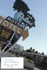 The Palms (heyshelby) Tags: sign handwriting portland hotel words outdoor text motel note nostalgia palmtree desaturated neonsign portlandoregon 1980 northportland thepalms 97217 northportlandoregon est1980 canonrebelt3i