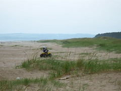 The use of motor vehicles is not permitted (nz_willowherb) Tags: beach forest scotland fife vehicle motor tentsmuir