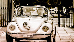 The wedding (exenza) Tags: wedding blackandwhite bw italy car bride beatle