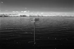 Baignade interdite (Patrice StG) Tags: blackandwhite bw river ir noiretblanc pentax gimp nb shore qubec stlawrence infrared stlaurent k20 850 fleuve stlawrenceriver rivage fleuvestlaurent k20d 850nm ir850nm