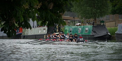CA-5_16-1094 (Chris Worrall) Tags: yellow chrisworrall chris worrall cambridge rowing 99s club spring regatta water river sport splash race competition competitor dramatic exciting 2016 theenglishcraftsman