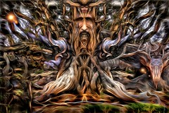 I Am Methuselah (Daniel Arrhakis) Tags: ohr druids methuselah ancienttrees mystictrees mysticsurrealism forestofathryon dryadsguardian