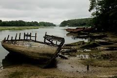 Boat cemetery (Yolanda Miel) Tags: brittany bretagne morbihan auray shipgraveyard golfedumorbihan lebono boatcemetery riviredubono cimetirebateaux yolandamiel bonoriver