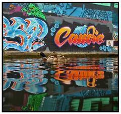 CANDIE, SPOOK & DUCKS (StockCarPete) Tags: streetart reflection graffiti ducks wallart candie hackneywick londonstreetart candiebandita
