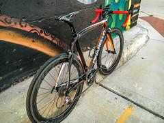 Pinarello Build (Chris Olbekson) Tags: prince dogma pinarello italianracingbikes carbonracingbike 2015pinarellodogmaprince