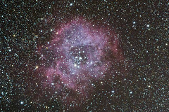 Rosette Nebula and Open Cluster in Monoceros (carlschmidt3) Tags: astrophotography monoceros rosettenebula nikonafs300mmf4difed nikond5300