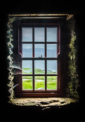 A Room With A View (Fergal Gleeson) Tags: ocean old ireland summer sky mountains green abandoned window nature grass stone clouds landscape countryside view cottage kerry forgotten frame fields coastline walls cobwebs