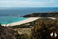 20160414-2ADU-033 Kangaroo Island