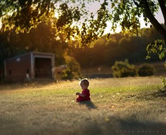 Summer Musings (Sonya Adcock Photography) Tags: family light sunset red horses horse baby tree grass barn outside golden kid nikon infant warm thought shadows child dress farm country rustic dramatic stall muse thoughts nikkor goldenhour musing childphotography nikond700 nikkor105mmdc