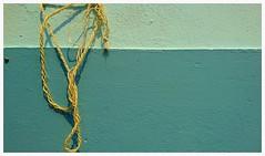 Verde,cuerda y caracol (carlosgconde1) Tags: verde green vert grn  pared wall  muro wand mur cuerda stripe strip corde corda seil rope caracol snail lumaca schnecke