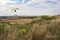 Dunstable Downs Paragliding (gracust) Tags: dunstabledowns dunstable chilterns paragliding gliding landscape bedfordshire countryside rural scenic