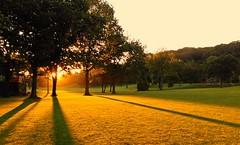 Sonnenaufgang in Herne.... (Mein Ruhrgebiet) Tags: sonnenaufgang herne sonne morgen morgens dermorgen ruhrgebiet ruhrpott nrw gysenberg gysenbergpark volkspark naherholung grnanlage